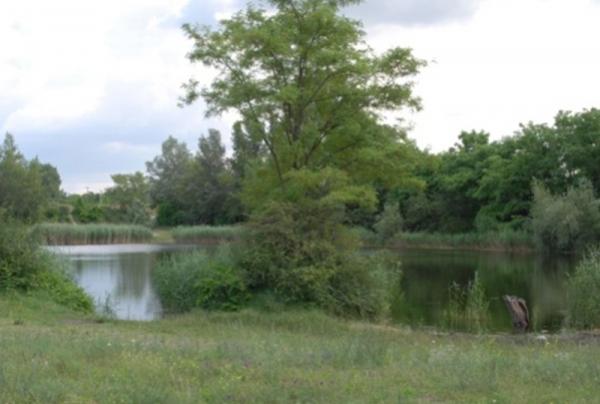 Szigetszentmiklós, Bucka-tó