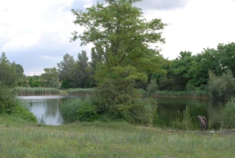 Szigetszentmiklós, Bucka-tó kármentesítése